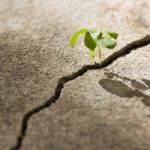 10-ways-to-build-resilience
